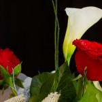 Egy szép gesztus: virágküldés akár online